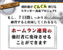 垣内・大塚7の日間スラッガー養成プロジェクト